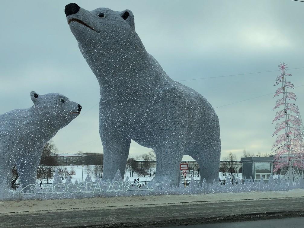 Медведи в Ростокино.